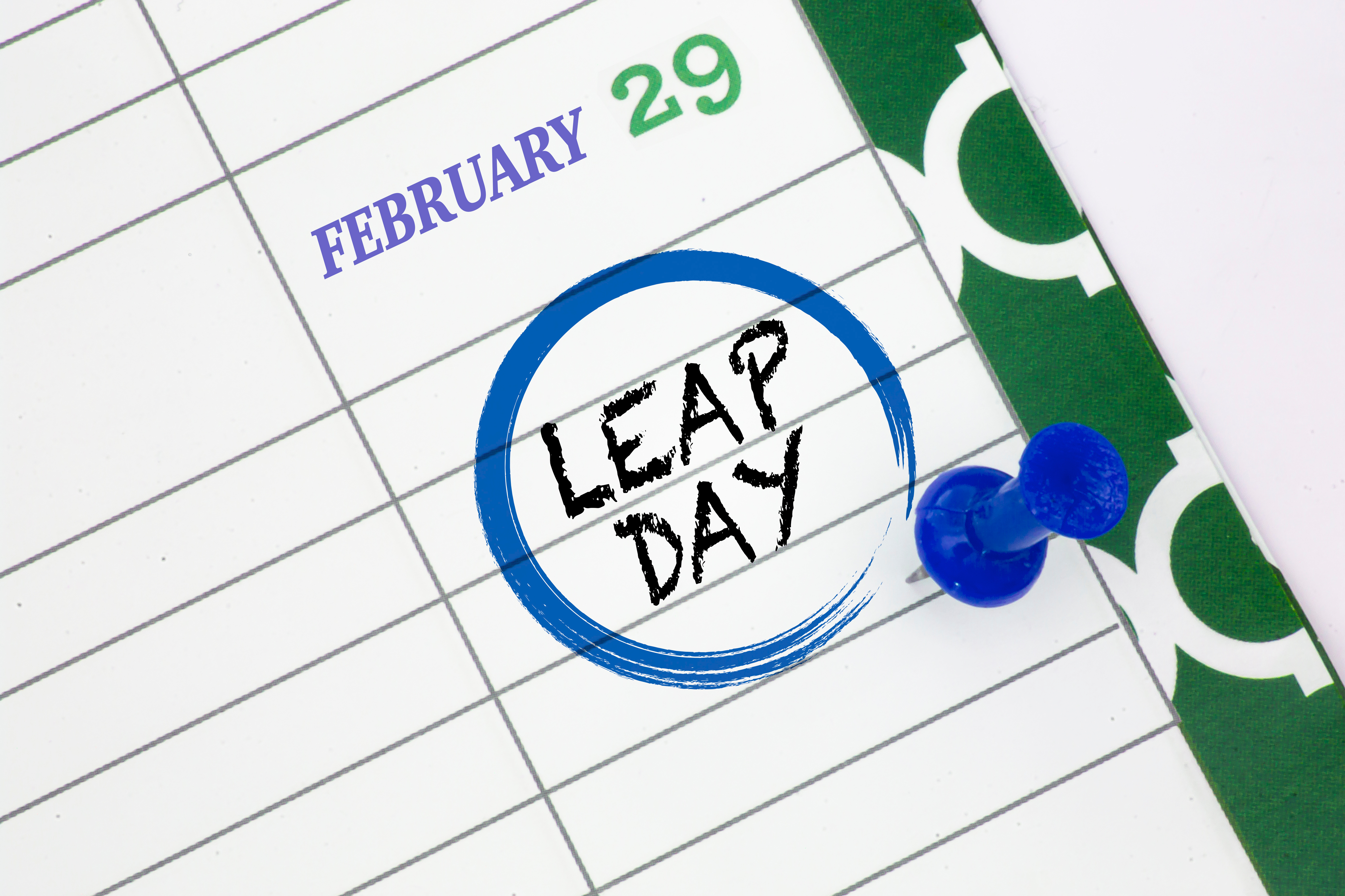 Pinot's Palette Apex and Leap Day 2020