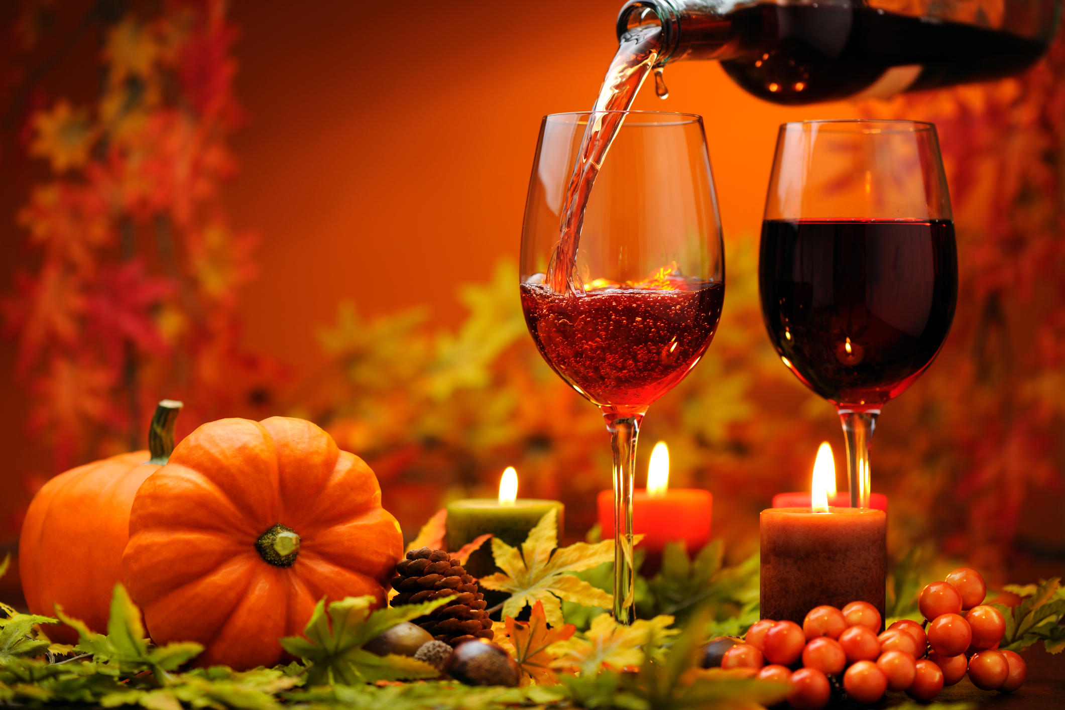 Which Wines Pair Best With Which Thanksgiving Dishes?
