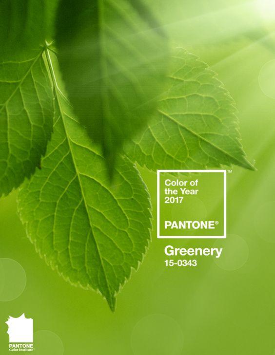 Pantone 2017 - Greenery
