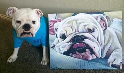 Paint Your Fur-baby! **Sign up deadline is 7/15