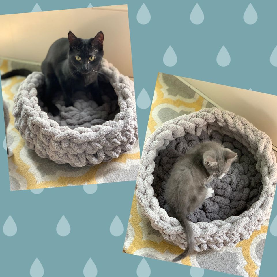 Chunky Knit Pet Bed/ Knit Basket