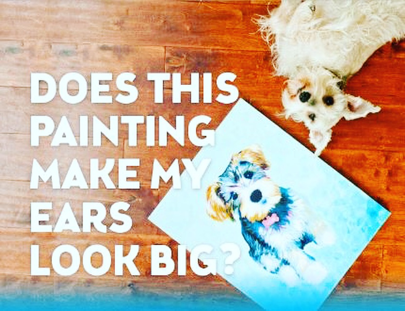 Paint Your Pet in Olathe