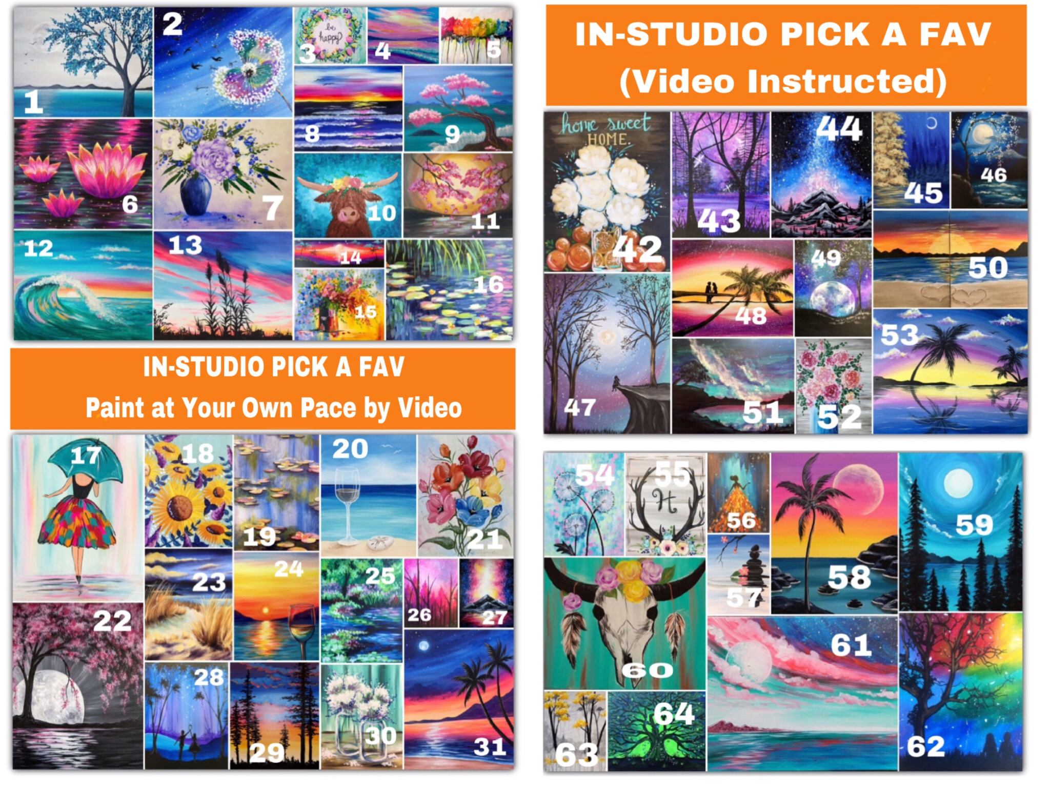 DiY Pick One:  Video  Guided In-Studio