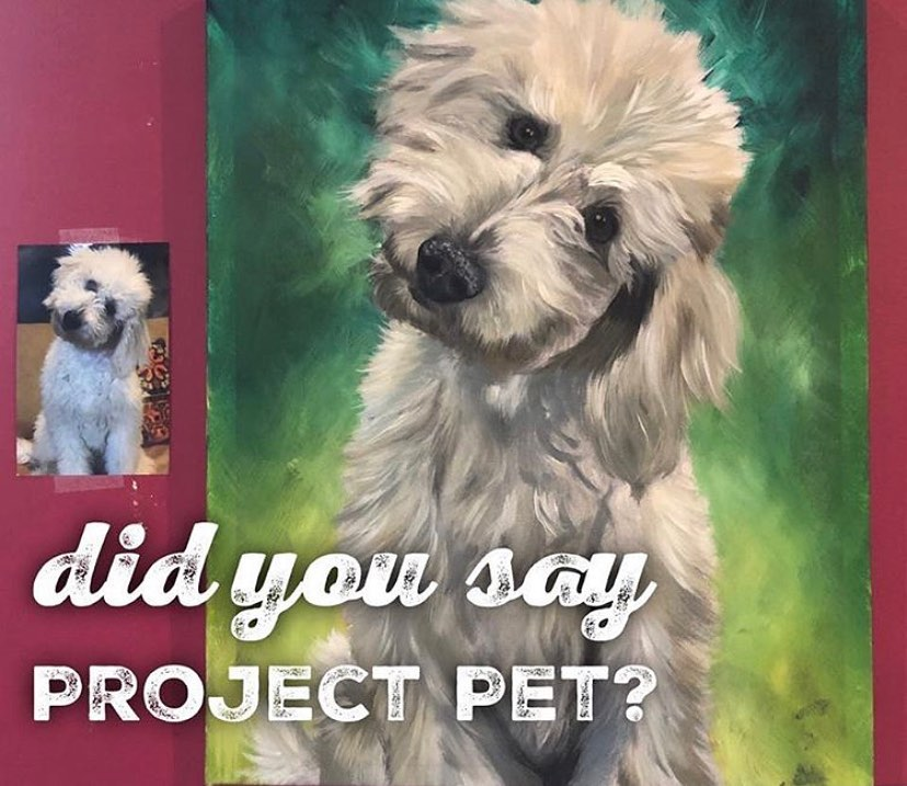 Project Pet! Donations accepted for the Humane Society of Delaware County
