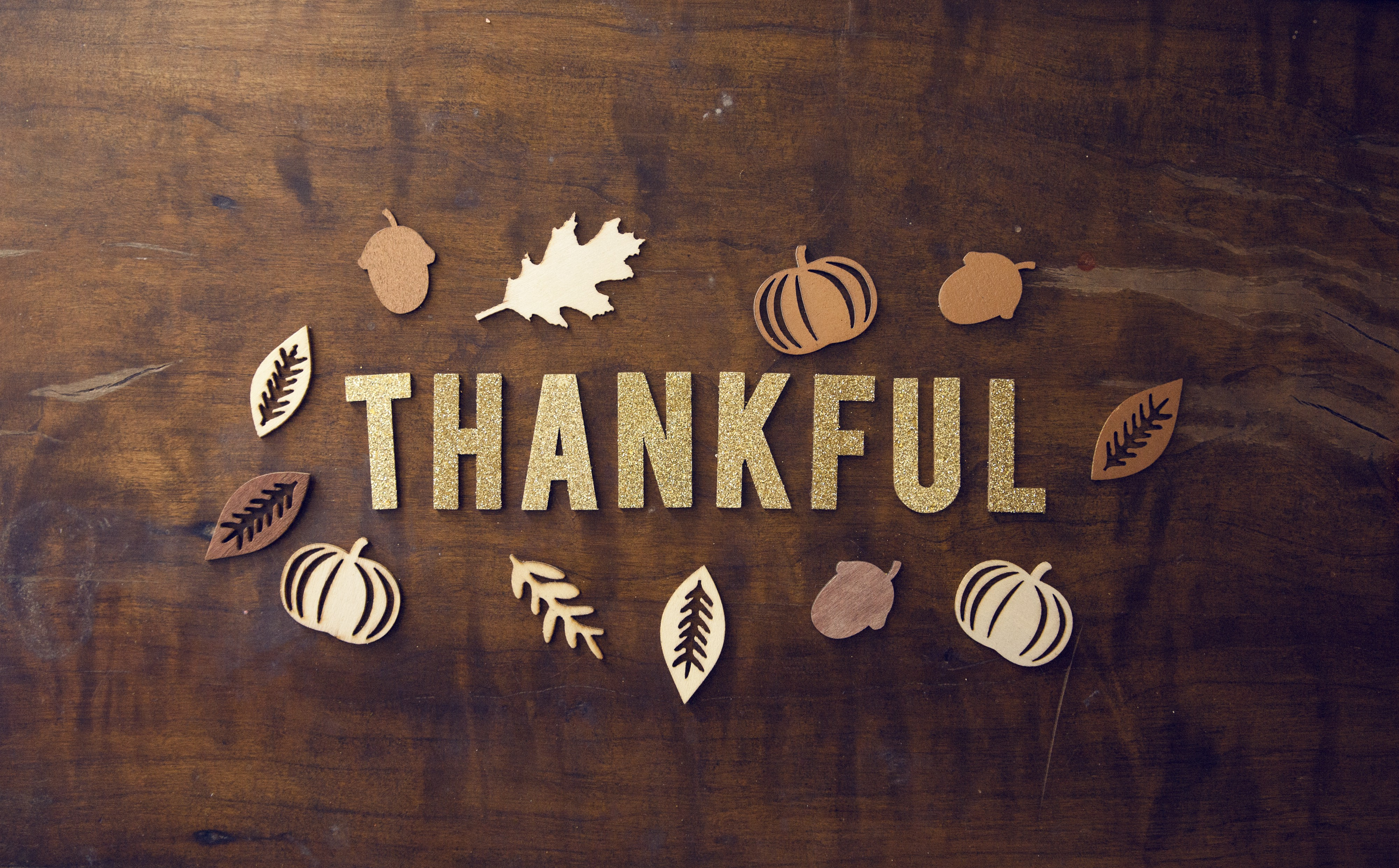 Being Thankful This Time Of Year (And Every Day!)