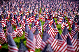 American flags Memorial Day